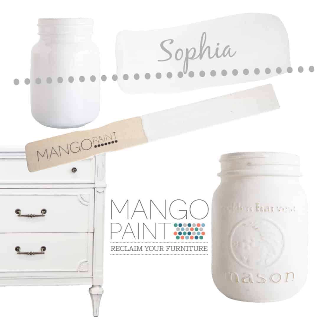 Collage of items painted in Mango Paint colour Sophia
