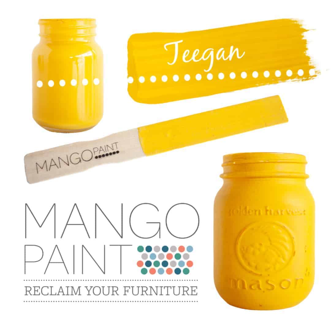 Collage of items painted in Mango Paint colour Teegan
