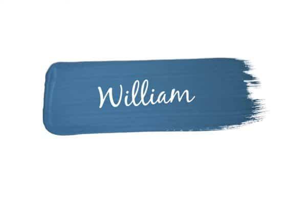 paint swoosh of Mango Paint colour William